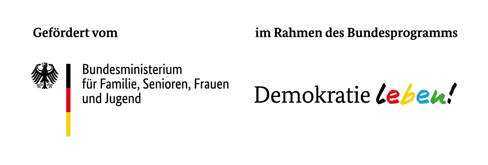 RAA-MV Logo